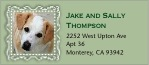Cara pet address labels
