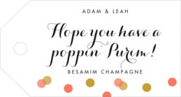 Champagne luggage tags