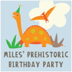 Dinosaur baby labels and stickers