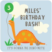 Dinosaur baby birthday coasters