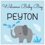 Baby Elephant Square Label In Sky