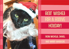 holiday cards - red - fest (set of 10)