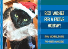 holiday cards - cobalt - fest (set of 10)