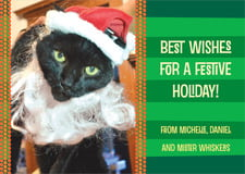 holiday cards - deep green - fest (set of 10)