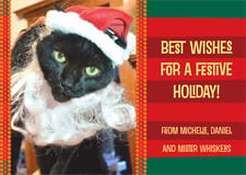 holiday cards - fiesta - fest (set of 10)