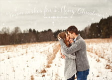 holiday cards - champagne - falling snow (set of 10)