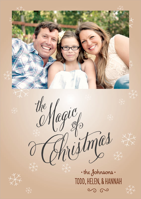 holiday cards - mocha - frosty (set of 10)
