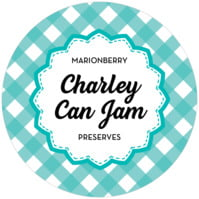Gingham Small Canning Jar Topper In Turquoise