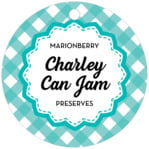 Gingham Circle Hang Tag In Turquoise