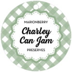 Gingham circle hang tags