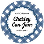 Gingham circle labels