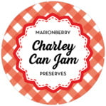 Gingham Circle Label In Cherry Red