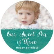 Brush Edge large circle labels