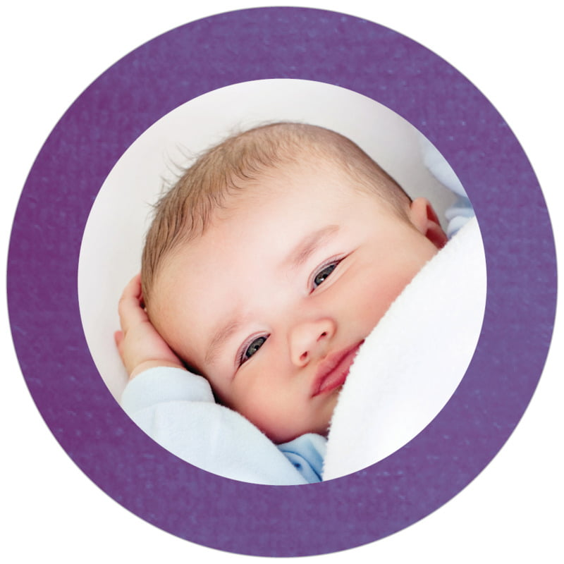circle photo labels - plum - simple edge (set of 20)
