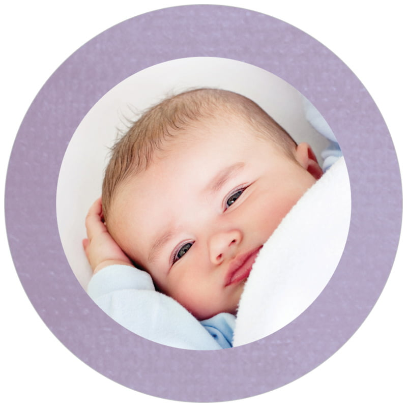 circle photo labels - lilac - simple edge (set of 20)
