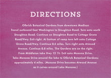 custom enclosure cards - radiant orchid - film edge (set of 10)