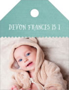 Chevron Edge small luggage tags