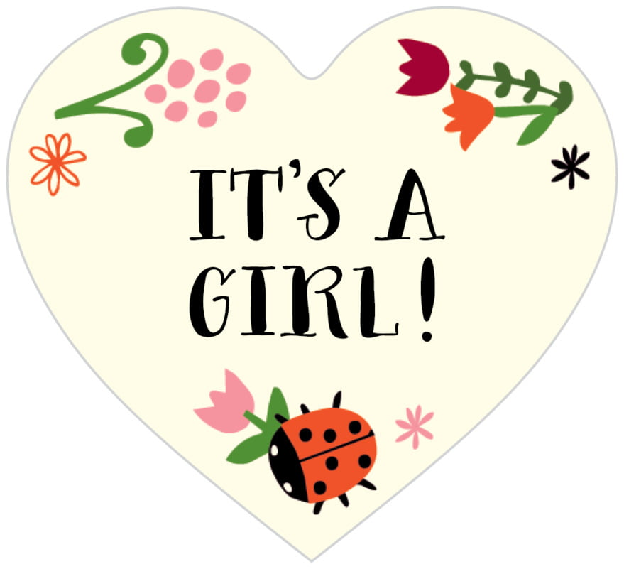 small heart food/craft labels - pink - lady bug (set of 20)
