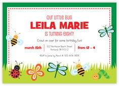 Lil' Bug invitations