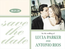 custom save-the-date cards - sage - metropolitan (set of 10)