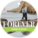 Picture Perfect Circle Hang Tag In Lime