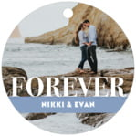 Picture Perfect circle hang tags
