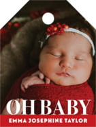 Picture Perfect Small Luggage Tag In Deep Red