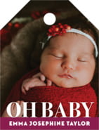 Picture Perfect small luggage tags