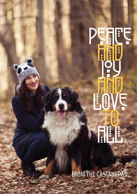 holiday cards - gold - peace to all (set of 10)