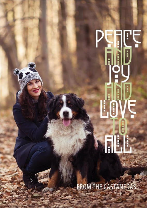 holiday cards - green tea - peace to all (set of 10)