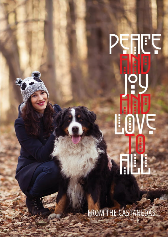 holiday cards - cherry red - peace to all (set of 10)