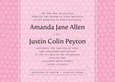 custom invitations - pale pink - swiss dots (set of 10)