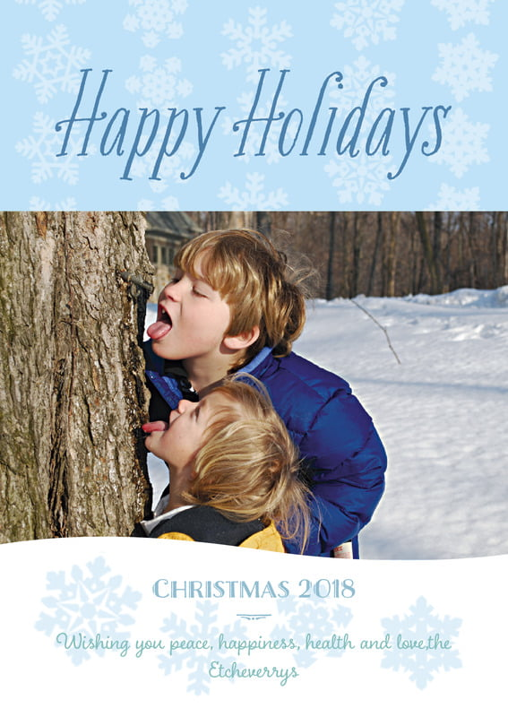 holiday cards - ice blue - snowflakes drift (set of 10)