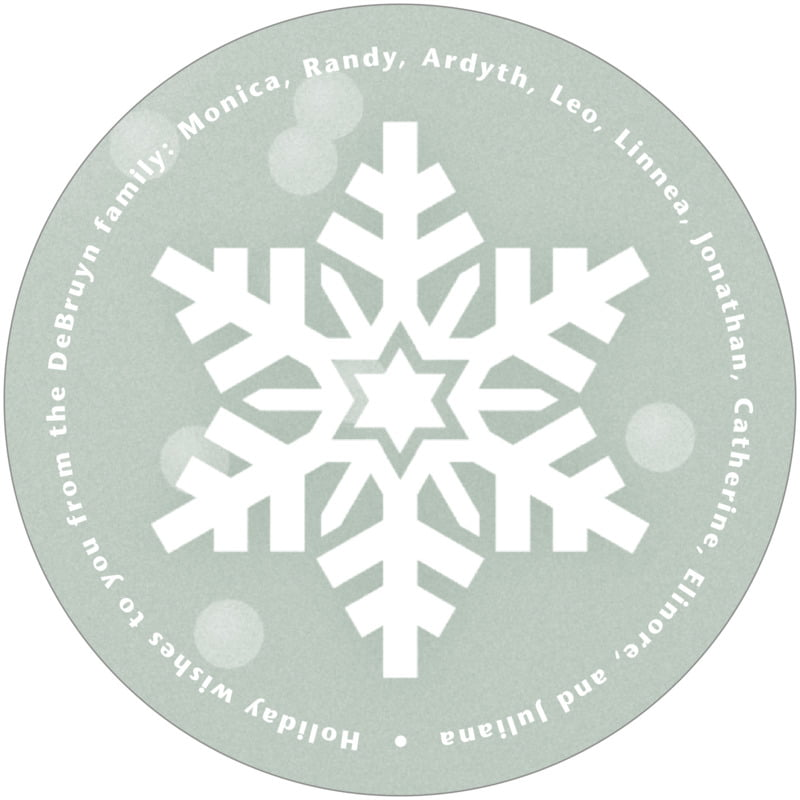 round holiday coasters - green - snowflake (set of 12)