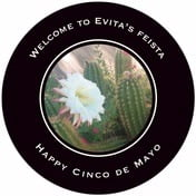Vida cinco de mayo coasters