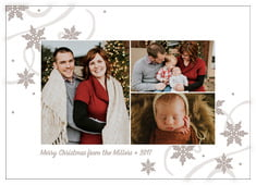 Winter Wonderland Photo Cards - Horizontal In Warm Grey