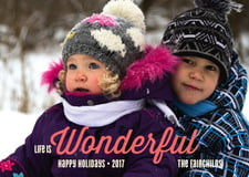 holiday cards - red - winter wonderful (set of 10)