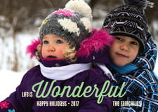 holiday cards - mint - winter wonderful (set of 10)