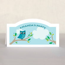 Woodland Owl place cards