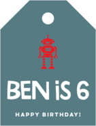 Elements Icon small luggage tags