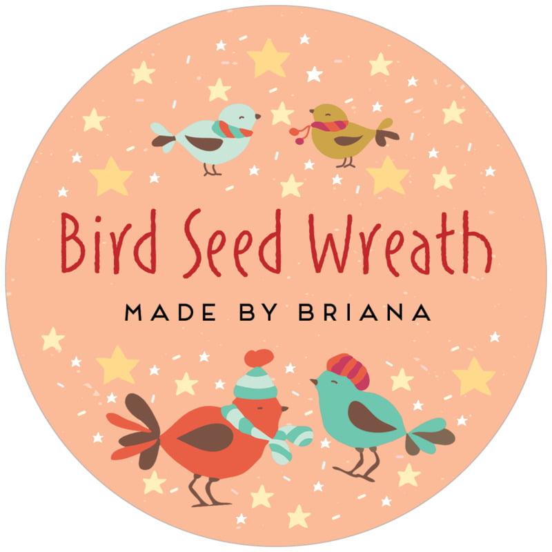 circle food/craft labels - peach - merry birdies (set of 12)
