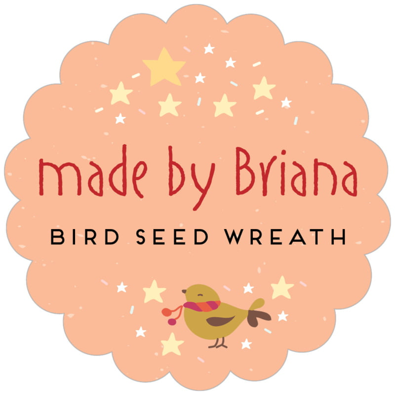scallop food/craft labels - peach - merry birdies (set of 20)