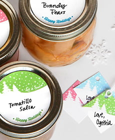 let it snow canning kit