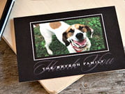 pet thank you cards